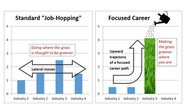 Standard Job-Hopping vs. Focused Career